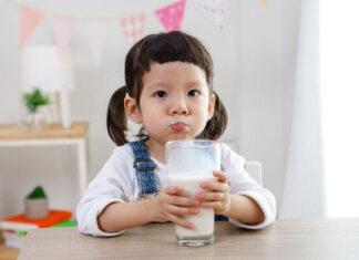 Manfaat susu s26